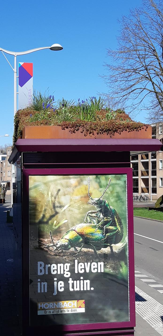 Het het bushokje aan de Vlaszak in Breda.