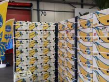 Kloosterboer bouwt volautomatische containerterminal voor bananen Chiquita