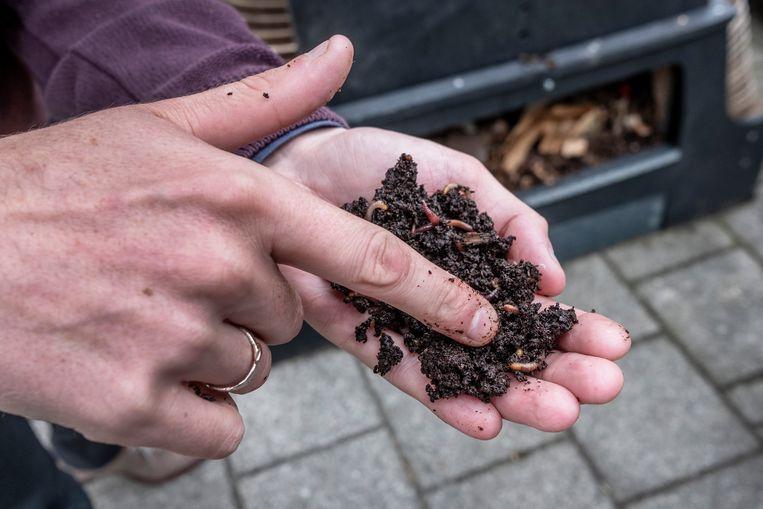 De kaviaar van alle compostsoorten. Beeld Patrick Post