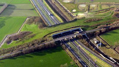 """""""Ecoduct nodig voor onneembare barrière"""""""