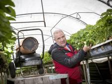 Fruittelers in Twente in actie tegen 'grootste vijand'