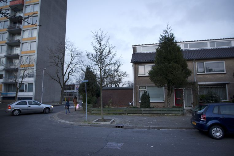 De Oasedreef in de Utrechtse wijk Overvecht, waar de politie huiszoeking heeft gedaan in de ouderlijke woning van een 18-jarige Utrechtse jihadverdachte. Beeld null