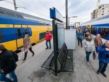 Treinverkeer Alphen - Leiden weer opgestart na aanrijding met dier