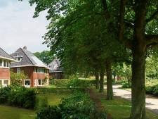 Utrechtse Heuvelrug vervangt  79 onveilige bomen