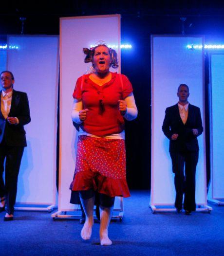 Vestzak over ontwerp theaterzaal Sons dorpshuis: 'Ongezellig, koud en industrieel'