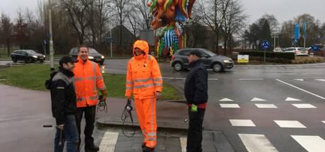 Carnavalskunstwerk Prinsenbeek weg voor storm