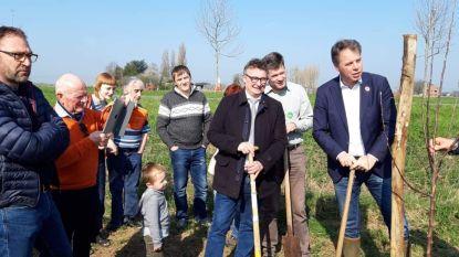 Voedselbos aan Oude Kale krijgt vorm: eerste bomen aangeplant