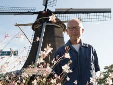 Capriolen op twee eeuwen oude Dalfser molen