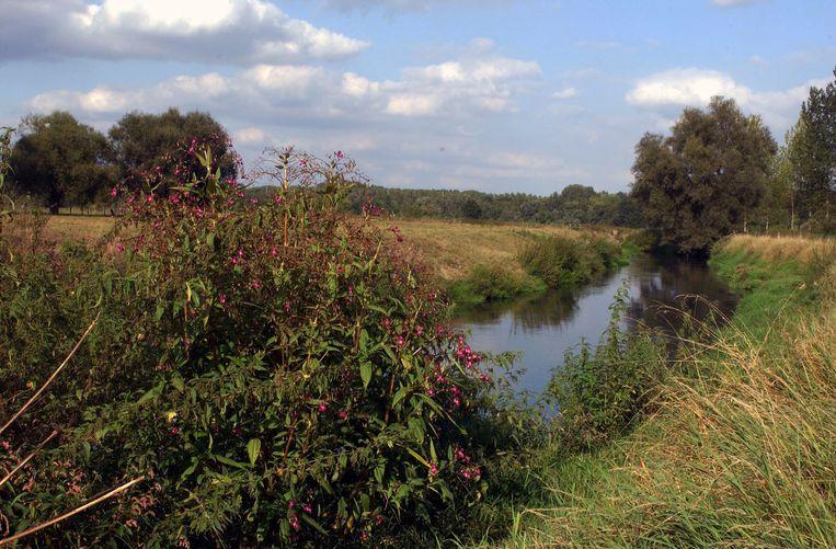 De Leibeek in Oud-Heverlee wordt weer gezond, de provincie en de gemeente zullen samen de sanering van de Leigracht en de Vloetgroep in Sint-Joris-Weert aanpakken en bekostigen.