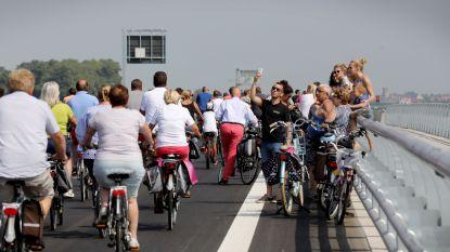 N376 tussen Brugge en Sluis krijgt betere fietspaden, rotonde en carpoolparking