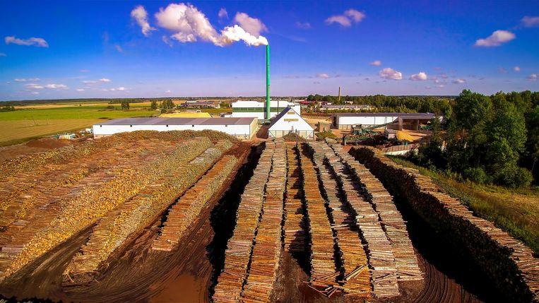 Houtverwerking voor de productie van pellets in Estland. Beeld Hollandse Hoogte
