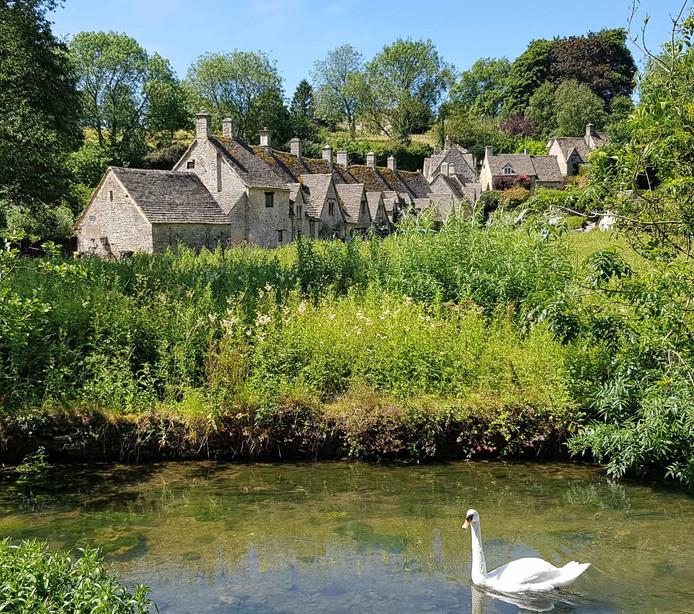 Klassieke Engelse huisjes en een watertje met een zwaan in het dorp Bibury. Vakantie in de prachtige streek Cotswold.