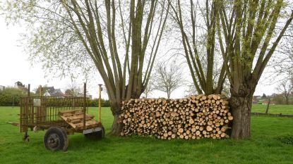 Natuurvereniging verkoopt brandhout