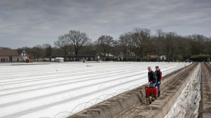 Komende weken 25.000 seizoensarbeiders nodig