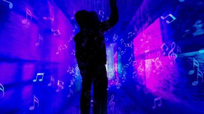 Vleugje Tomorrowland bij ijssculpturen