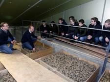 Werk zat voor hoger opgeleiden in Zeeuws-Vlaanderen