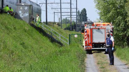 Treinverkeer onderbroken door wanhoopsdaad op sporen, slachtoffer slechts lichtgewond