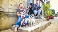 """Dorpsstraat, deel 9: """"Mijn honden zijn mijn alles. Toen Benji geopereerd was droeg ik hem dicht bij mij in een draagdoek"""""""