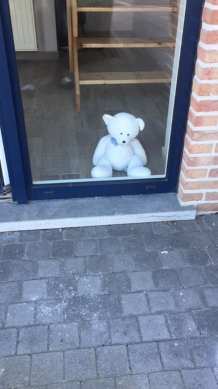 De brave beer wil ook gevonden worden.