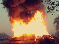 Familieboerderij in Sint-Michielsgestel gaat reddeloos op in vlammen: 'Ik weet niet hoe het nu verder moet'