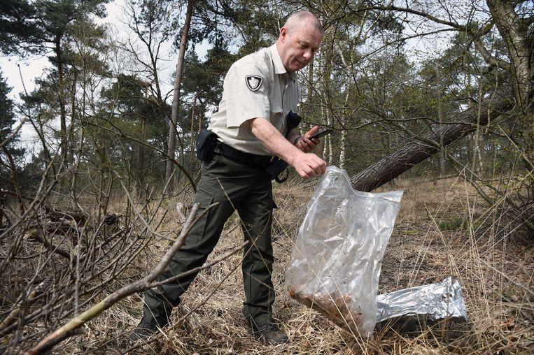 Boswachter Sjaak Smits vindt gedumpte wiet in een natuurgebied. Beeld Marcel van den Bergh