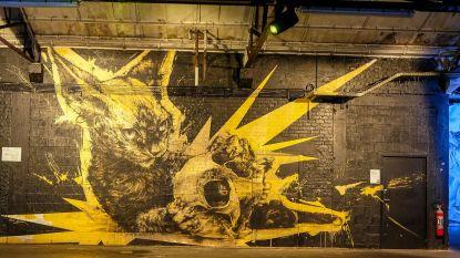 Zo mooi kan een supermarkt zijn: leegstaand pand wordt graffitiwalhalla