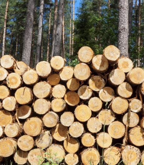 Staatsbosbeheer betreurt verwarring bomenkap in Ruurlo