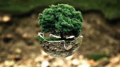 Nieuwe burgerbeweging WemmelAir wil ecologischer leven