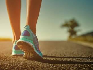 Sint-Katelijne-Waver lanceert dit voorjaar vier nieuwe wandelingen