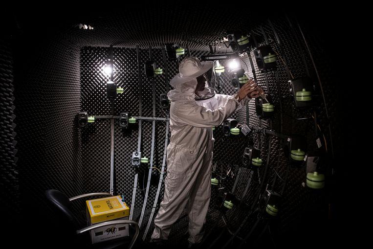 Martijn Agterberg in imkerpak aan het werk in zijn mobiele laboratorium.  Beeld Koen Verheijden