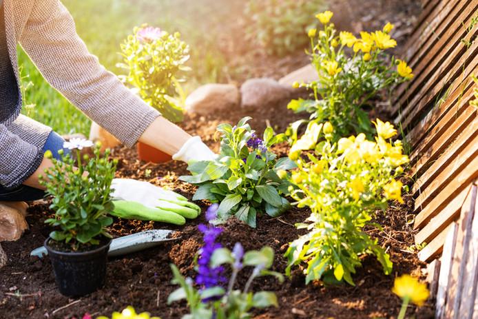 Le temps est venu de vous occuper de votre jardin et de votre terrasse, afin que vous puissiez en profiter pleinement une fois l'été arrivé.