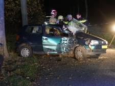 Vrouw gewond door botsing tegen boom in Zieuwent