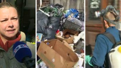 """Huurster maakt van haar appartement heus stort: """"De kakkerlakken zitten tot bij de buren"""""""