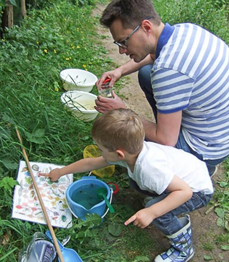 Op zoek naar eetbare planten met gids IVN Zoetermeer
