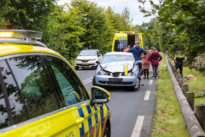 Een automobilist is gewond geraakt bij aanrijding met een hert op de Kanaalweg in Laag-Soeren. Ook het dier raakte gewond en is afgeschoten.