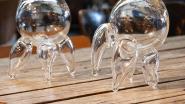 Glasworkshops van Gentse Feesten gaan door