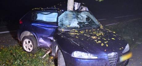Automobilist vouwt auto rond boom in Hulst