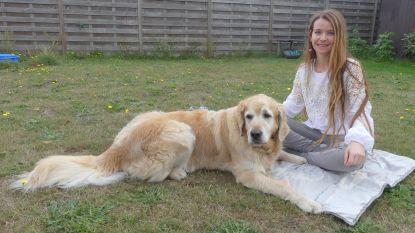 Samen met het baasje op de yogamat: Annelies (29) lanceert unieke lessenreeks 'hondenyoga'