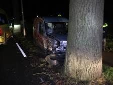 Automobilist aangehouden na botsing met bomen in Zevenaar