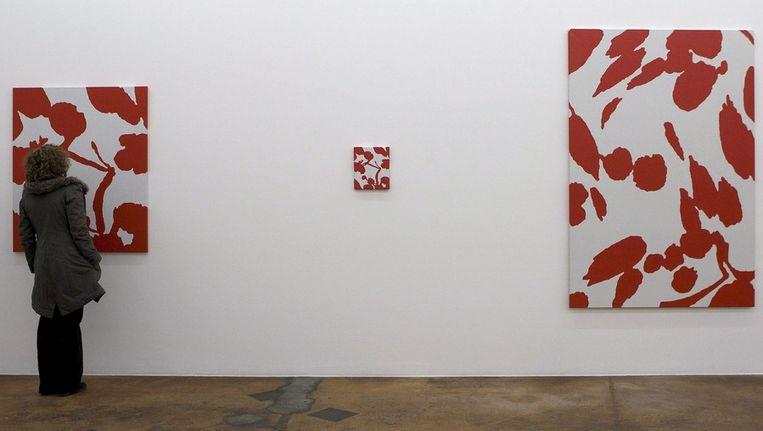 Kunstwerken van één van de winnaars, beeldend kunstenaar Daan van Golden ©, anp Beeld