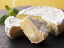 Camembert van Jumbo uit de schappen gehaald vanwege listeria