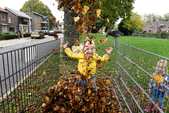 De bladkorven zijn bedoeld voor bladeren.