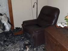 Heldhaftige hond alarmeert gezin bij schoorsteenbrand