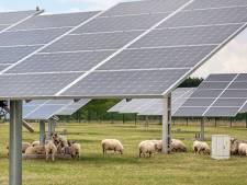 Zonneweide in Dongen is begin reeks acties grootschalige energieopwekking