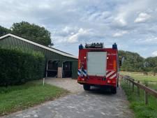 Brand in paardenstal Ermelo in de kiem gesmoord