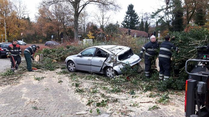 Op de Floralaan Oost in Eindhoven is een boom op een auto gevallen door de storm.
