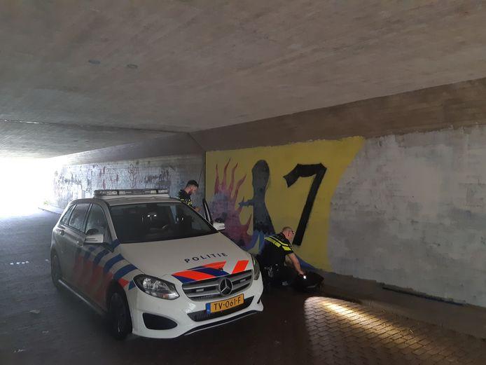 Het kunstwerk in de tunnel bij de Zandenplas