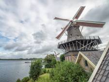 Katertje in Kralingen na mislopen Molenprijs, maar 'dat bezoekerscentrum komt er'
