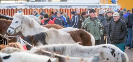 Onderzoek naar behoud eeuwenoude paardenmarkt in Goor