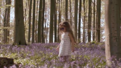 """Regi slaat mea culpa na fout in videoclip 'Ellie': """"Ik wist niet dat het niet mocht"""""""